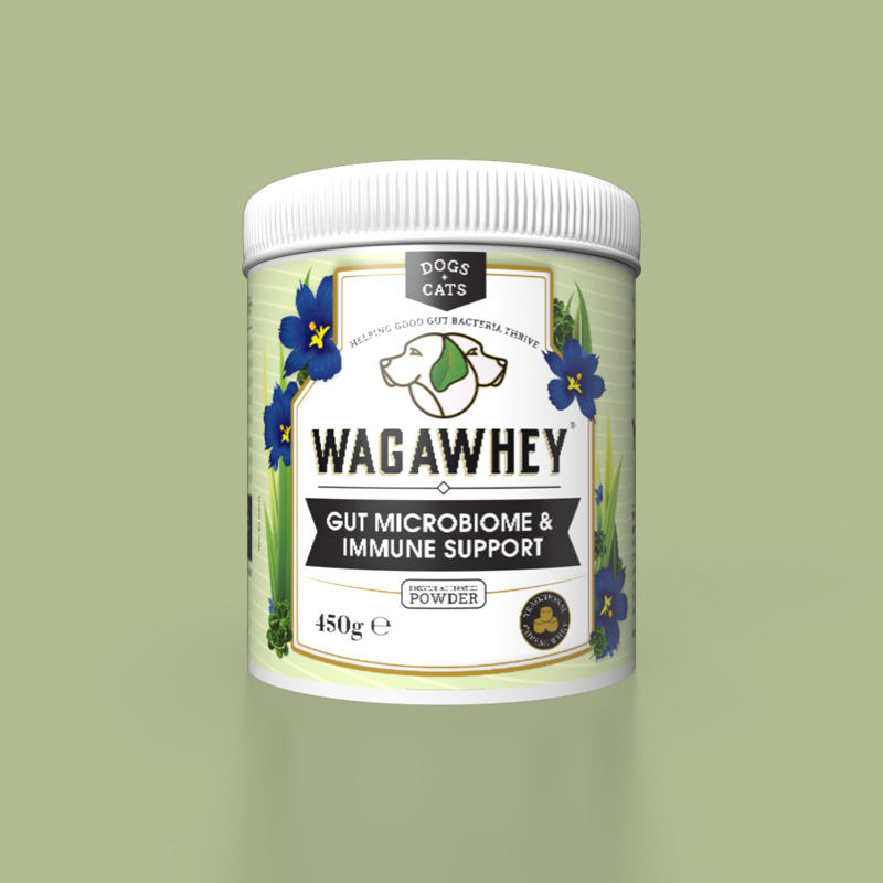 wagawhey packaging design concept mockup 3